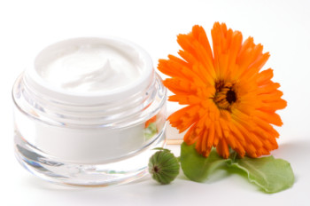Face cream and calendula flower