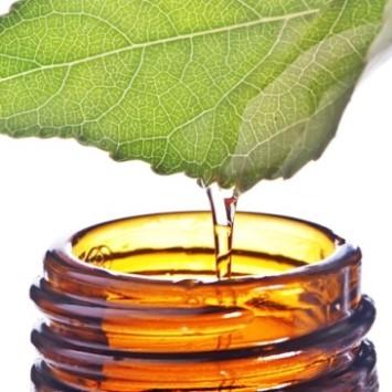 Fitoaromaterapija i eterična ulja u zimskim mjesecima